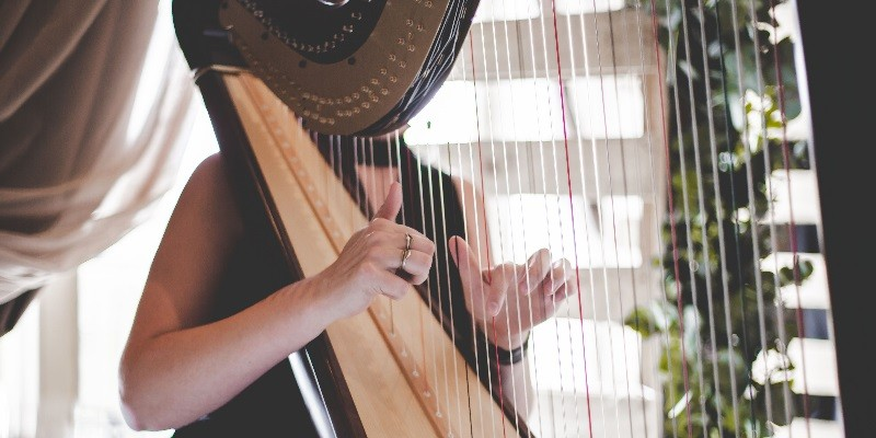 harpnoted-11