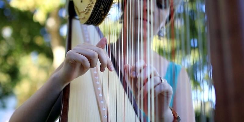 harpnoted-2
