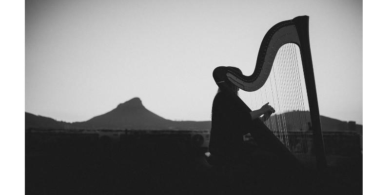 harpnoted-7